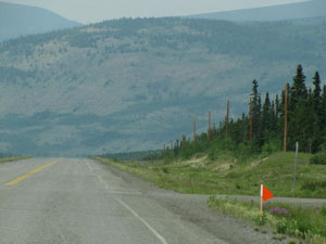 Spotted along the Alaska Highway in the Yukon Territory