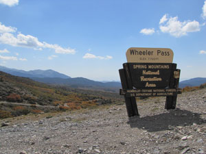 WheelerPass5