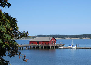 Whidbey6